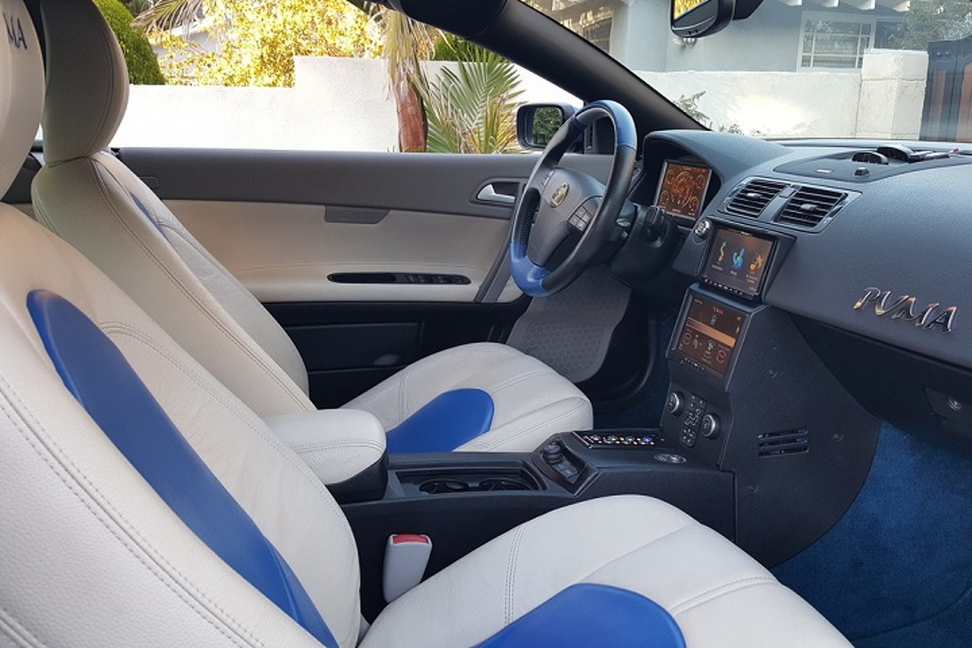 Own This Youabian Puma for a Cool $895K