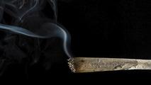 Marijuana related road fatalities double following legalization