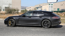Porsche Panamera Shooting Brake poses for the camera