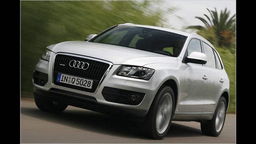 Die Quadratur des SUV-Kreises? Wir testen den Audi Q5
