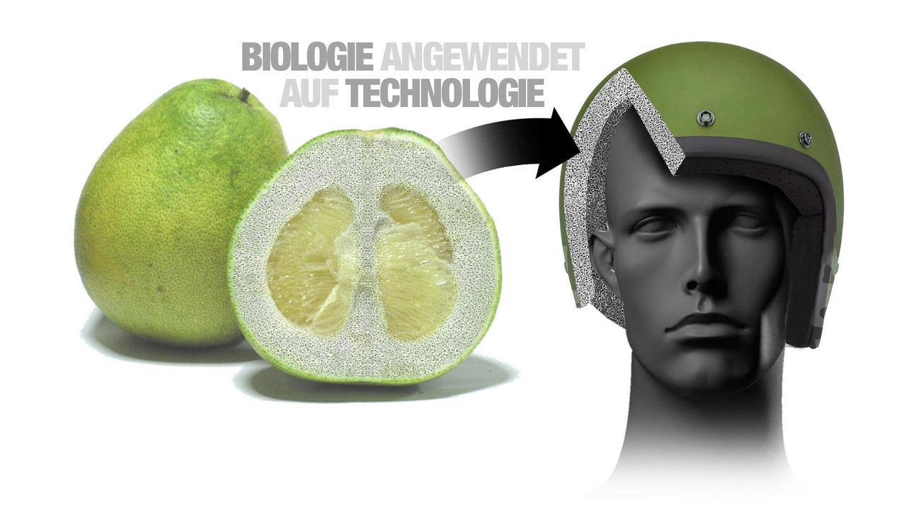 BMW Fruit Protection