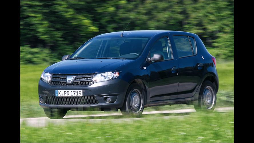 Dacia Sandero: Freude an FKK?