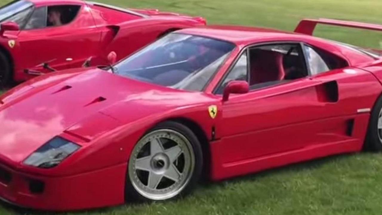 Ferrari F40, Enzo
