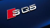 2013 Audi SQ5 TDI 15.6.2012