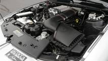 2009 Ford Mustang Iacocca 45th Anniversary Edition