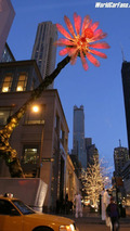 Lexus Sets Chicago in Bloom