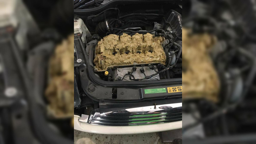Mini Owner Pours 5 Litres Of Window Washer Fluid Into Engine