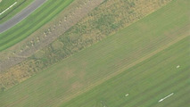 Crop Circles Appear at Goodwood Ahead of Revival Meeting (UK)
