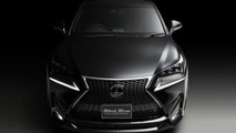 Lexus NX by Wald International
