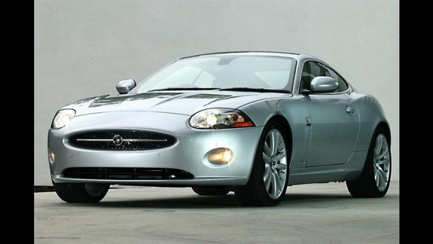 Abgespeckt und schöner: Jaguars neue XK-Generation