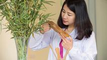 Bir sonraki aracınızda bambu kullanılabilir