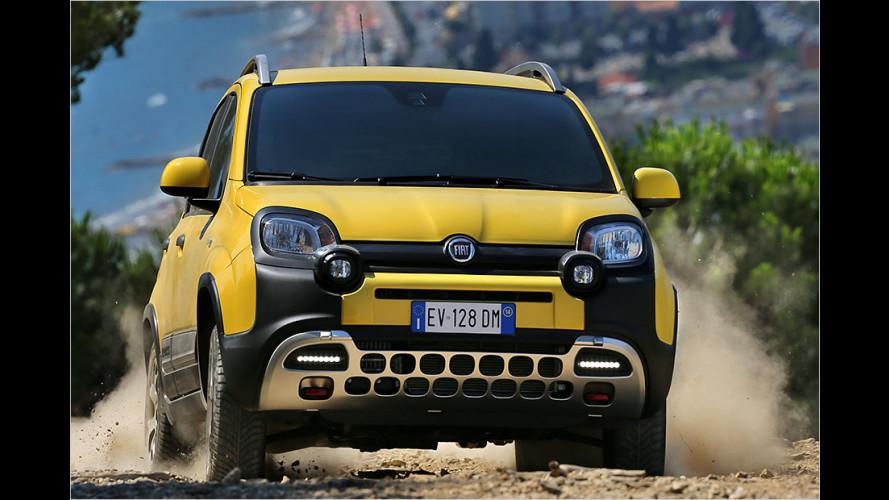 Fiat Panda Cross 2014 im Test