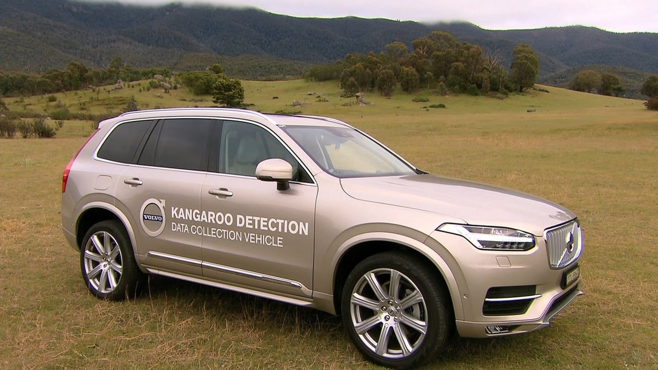Volvo kangaroo detection technology