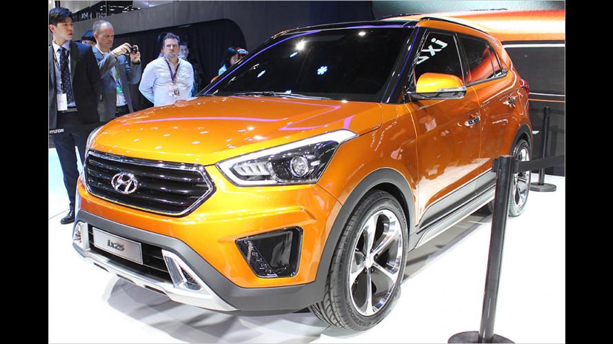 Kleines SUV und große Limousine für China