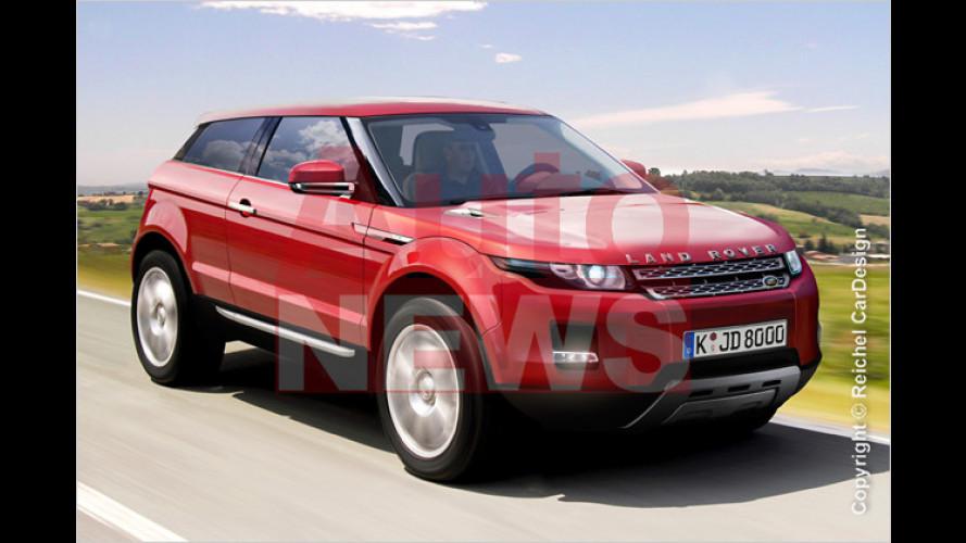 Neue SUVs von Alfa bis VW: Schicke Kraxler fürs Volk