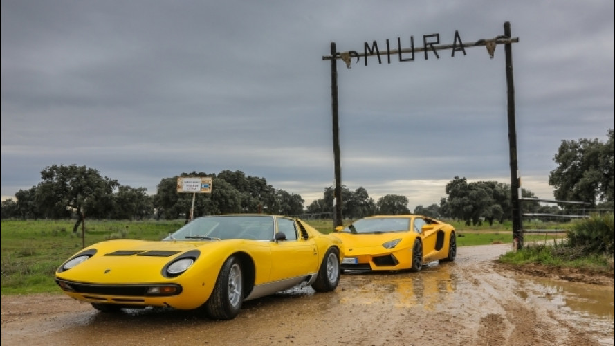 Lamborghini Miura, un viaggio alle origini del nome