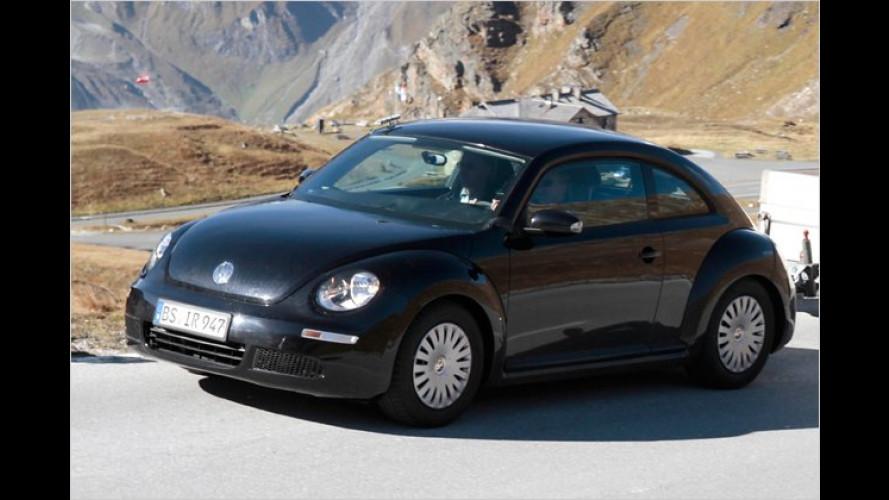 Käfer 2.0: Erlkönig des nächsten New Beetle erwischt