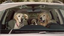 Subaru Barkley's Dog Ads