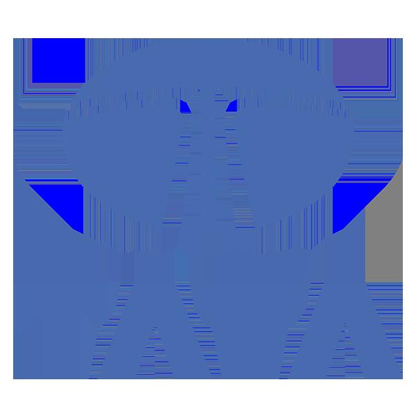 Tata Vista